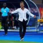 المدير الفني لمنتخب المغرب هيرفي رونار في كأس أمم أفريقيا 2019 (صور: AFP)