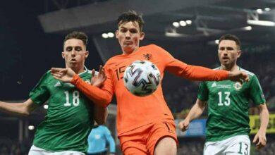 صورة بث مباشر | مشاهدة مباراة هولندا وآيرلندا الشمالية في تصفيات يورو 2020