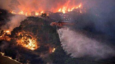 صورة نجوم العالم في مباراة خيرية لدعم ضحايا حرائق غابات أستراليا