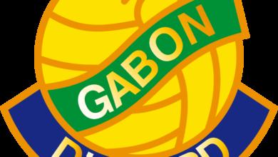 الجابون تتحضر لخلافة الكاميرون في تنظيم كأس أفريقيا (صور: Google)