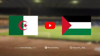 صورة بث مباشر | مشاهدة مباراة الجزائر وفلسطين في كأس العرب