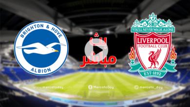 صورة بث مباشر | مشاهدة مباراة ليفربول وبرايتون في الدوري الانجليزي