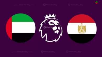 """غزو عربي """"إماراتي-مصري"""" على أندية الدوري الإنجليزي"""