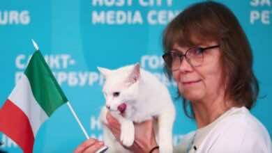 يورو 2020 : القط الروسي يختار طبق منتخب ايطاليا بدلاً من التركي