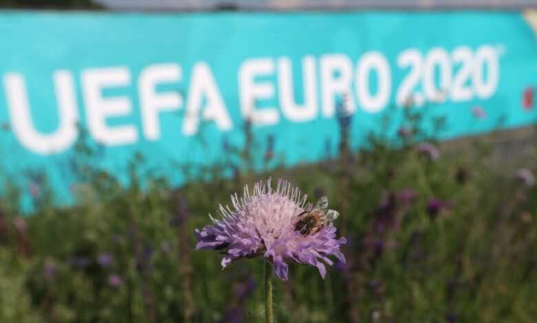"""""""ويمبلي يتزعم""""..ما هي ملاعب ومدن مباريات يورو 2020؟"""